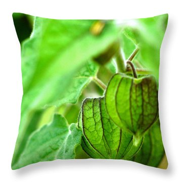 Poha Berry Lanterns Throw Pillow