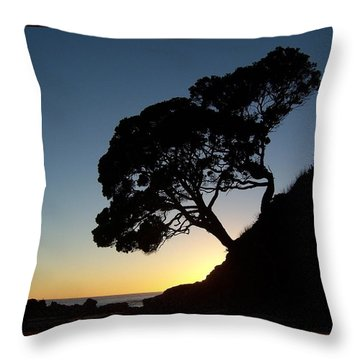 Pohutukawa Trees At Sunrise Throw Pillow
