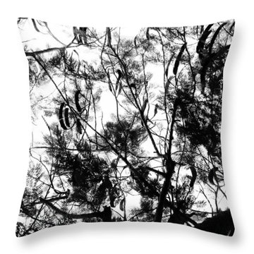 Throw Pillow featuring the photograph Poinciana Lace by Amar Sheow