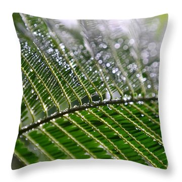 Throw Pillow featuring the photograph Poinciana Leaves- Glisten by Darla Wood