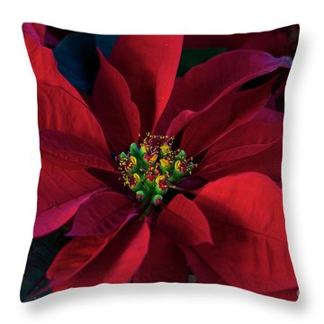 Poinsettia All Profits Go To Hospice Of The Calumet Area Throw Pillow