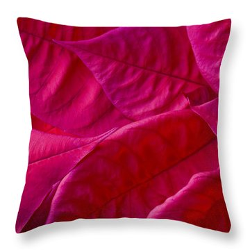 Poinsettia Leaves 1 Throw Pillow by Rich Franco