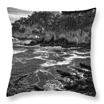 Throw Pillow featuring the photograph Point Lobo  by Ron White