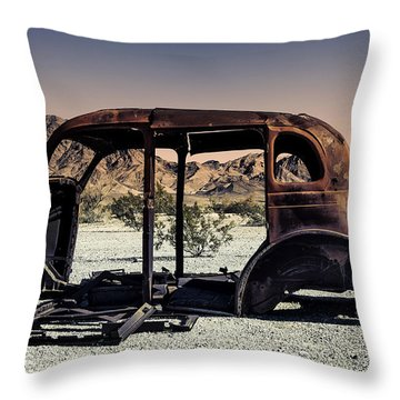 Point Of View Throw Pillow by Sandra Selle Rodriguez