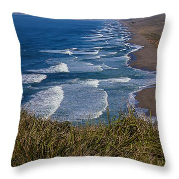 Point Reyes Beach Seashore Throw Pillow by Garry Gay