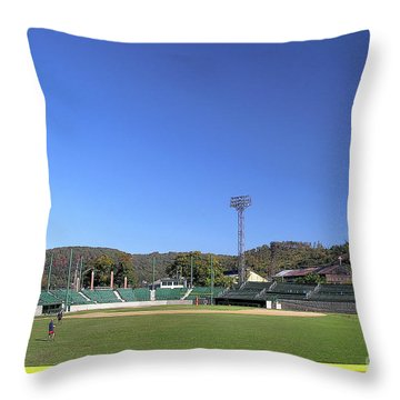 Point Stadium - Johnstown Throw Pillow