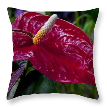 Pointed Throw Pillow by Doug Norkum