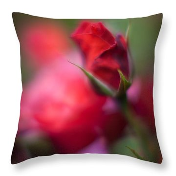 Points Throw Pillow by Mike Reid