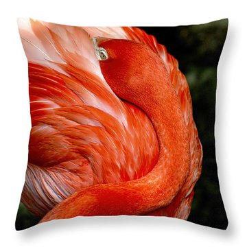 Poised Flamingo Throw Pillow