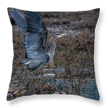 Poised For Flight Throw Pillow by Charlie Duncan