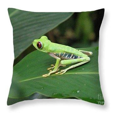 Poison Dart Frog Throw Pillow by DejaVu Designs