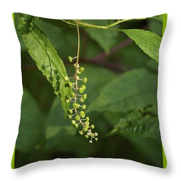 Throw Pillow featuring the photograph Pokeweed In The Rain by Jane Eleanor Nicholas