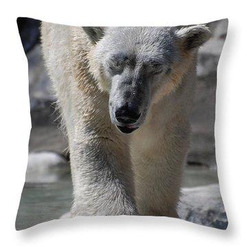 Polar Bear Balance Throw Pillow by DejaVu Designs