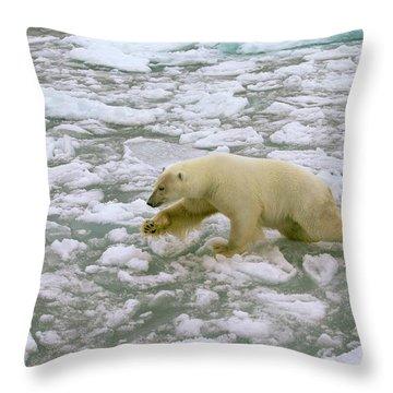 Arctic Air Throw Pillows
