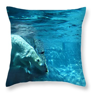 Polar Bear Throw Pillow by Steve Karol