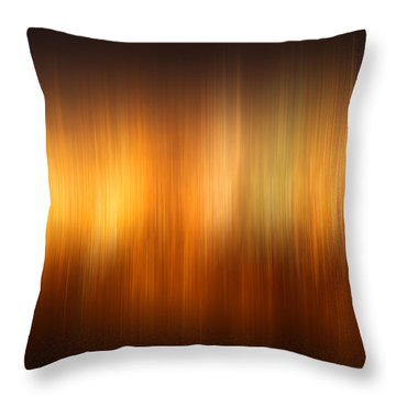 Polar Lights Throw Pillow