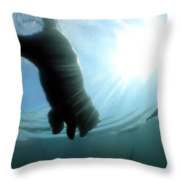 Polar Plunge Throw Pillow by Jackie Novak
