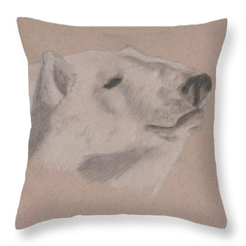 Polarization Throw Pillow