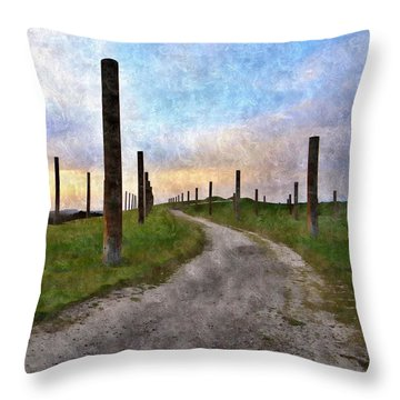 Pole Field Throw Pillow