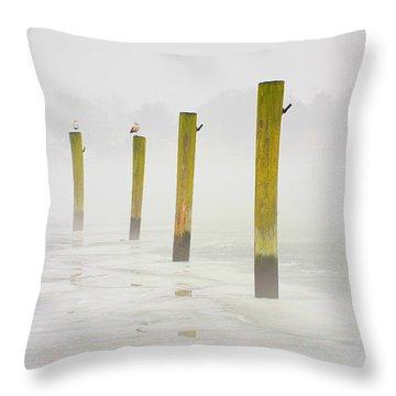 Poles Throw Pillow by Karol Livote
