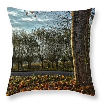 Pollard Willows In Rotterdam Throw Pillow