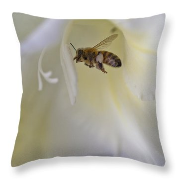 Pollen Carrier Bee Throw Pillow by Maj Seda