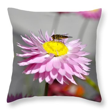 Throw Pillow featuring the photograph Pollination by Cathy Mahnke