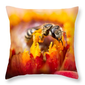 Pollination Throw Pillow by Priya Ghose
