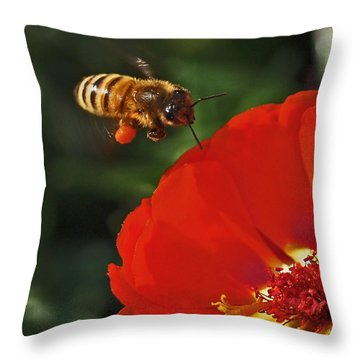 Pollination Throw Pillow by Rona Black