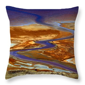 Pollution Throw Pillow by James Brunker