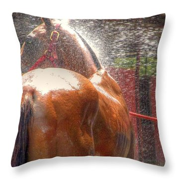 Polo Pony Shower Hdr 21061 Throw Pillow by Jerry Sodorff