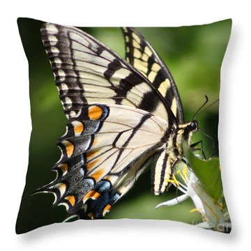Polychromatic Beauty Throw Pillow