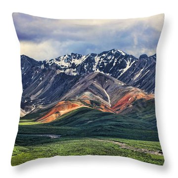 Polychrome Throw Pillow by Heather Applegate