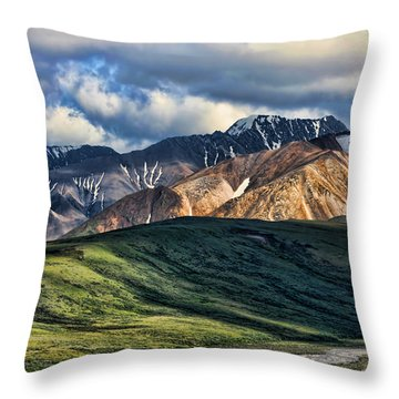 Polychrome Pass Throw Pillow by Heather Applegate