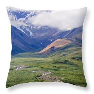In The Beginning, God Created... Throw Pillow