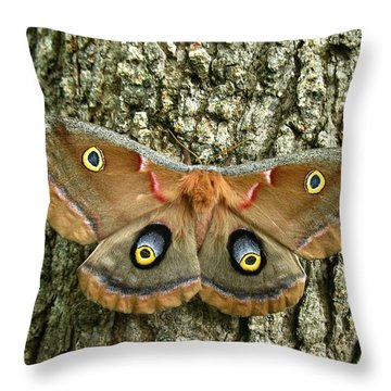 Polyphemus Moth Throw Pillow by William Tanneberger