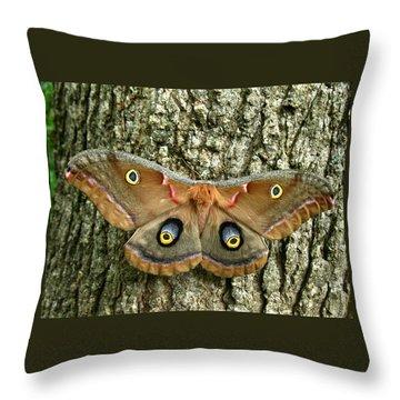 Polyphemus Moth Throw Pillow