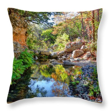 Pond At Lost Maples Throw Pillow