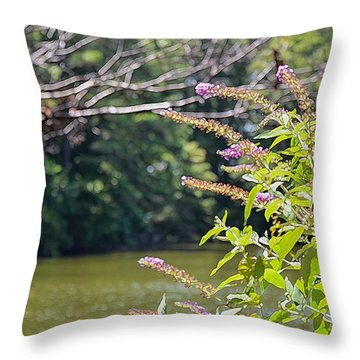 Throw Pillow featuring the painting Pond At Norfolk Botanical Garden 12 by Lanjee Chee