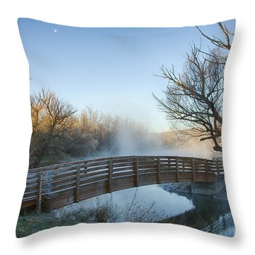 Pond Crossing Throw Pillow