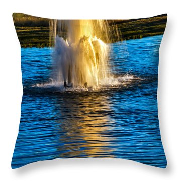 Pond Fountain Throw Pillow by Robert Bales