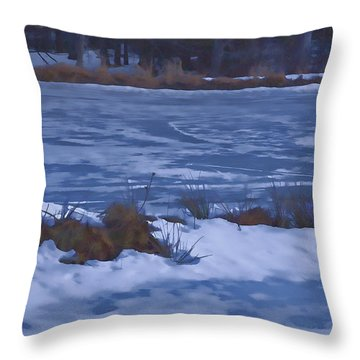 Throw Pillow featuring the photograph Pond In Winter by Tom Singleton