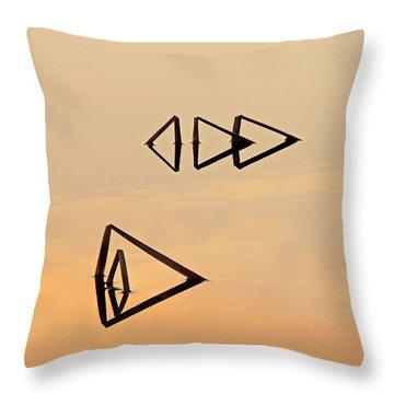 Pond Reeds Sunrise 2 Throw Pillow