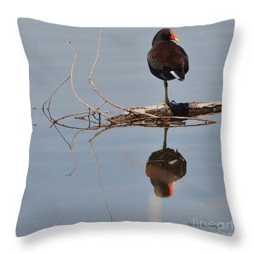 Throw Pillow featuring the photograph Pond Reflection by Debby Pueschel