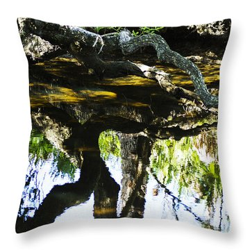 Pond Reflection Throw Pillow
