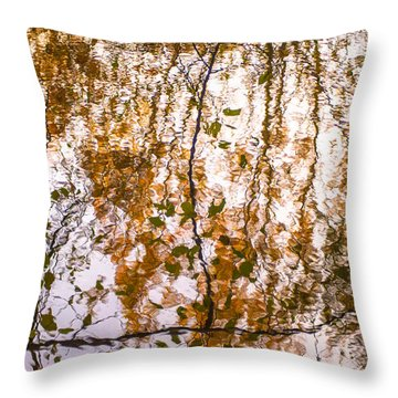 Pond Reflections #3 Throw Pillow