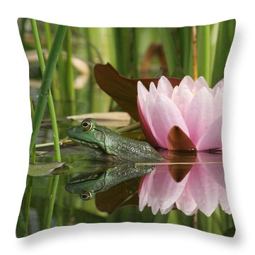 Pond Reflections Throw Pillow by Judy Whitton
