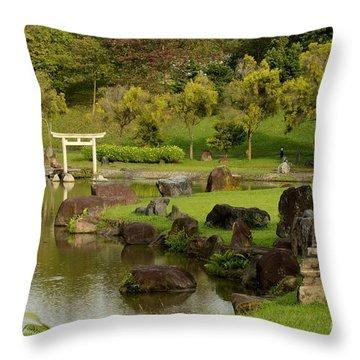 Pond Rocks Grass And Japanese Arch Singapore Throw Pillow