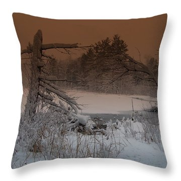 Throw Pillow featuring the photograph Pond Scape by Mim White