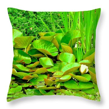 Pond The Color Of Green Throw Pillow by Margaret Newcomb